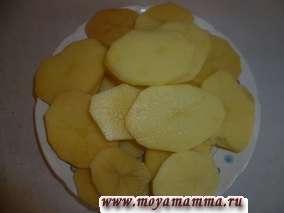 Картофель порезать кружочками. Посолить.
