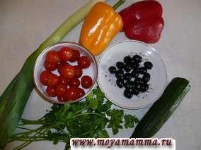 Рациональное питание для организма и типы диет