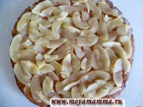 Постная медовая коврижка с яблоками. На испеченный корж раскладываем яблоки.