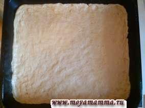 Пирог из орехового дрожжевого теста