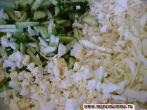 Яйцо порезать маленькими кусочками, огурец порезать узкими полосками, капусту нашинковать.